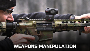 Weapon Manipulaition